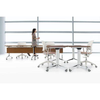 terina training table